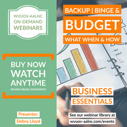 od-debra-lloyd-business-essentials-backup-binge-budget-250